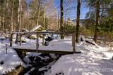 1453 Mountain Springs Road - Photo 48