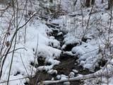 6 Gallant Moose Trail - Photo 2