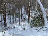 6 Gallant Moose Trail - Photo 12