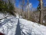 6 Gallant Moose Trail - Photo 13