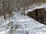 6 Gallant Moose Trail - Photo 8