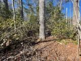 TBD Mountain Home Trail - Photo 7