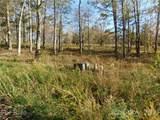 Lot #1 Pheasant Trail - Photo 3
