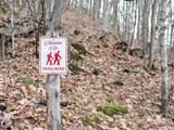 43 Creekside Way - Photo 22