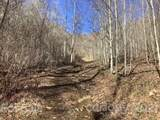 00 Puncheon Fork Road - Photo 1