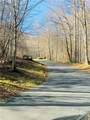 TBD Goldenleaf Road - Photo 7