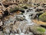 188 Triple Creek Drive - Photo 39