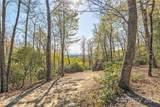 1907 Tree View Trail - Photo 10