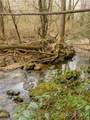 2 Arboretum Road - Photo 11