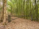 2 Arboretum Road - Photo 14