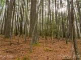 2 Arboretum Road - Photo 24