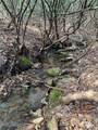 TBD Speckled Trout Run - Photo 1