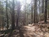171 Big Tree Way - Photo 4