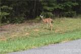 685 Whisper Lake Drive - Photo 11