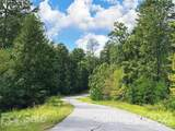 V/L Cove Forest Road - Photo 7