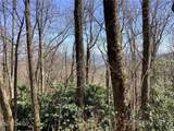 0 Black Bear Trail - Photo 3
