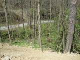 00 Tumbling Fork Road - Photo 17