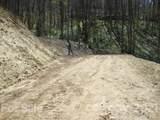 00 Tumbling Fork Road - Photo 8