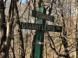 285 Granny Lewis Lane - Photo 5