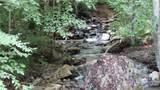 854 Old Roan Mountain Road - Photo 4