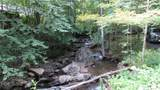 854 Old Roan Mountain Road - Photo 7