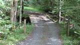 854 Old Roan Mountain Road - Photo 10