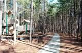 4341 Rustling Woods Drive - Photo 41