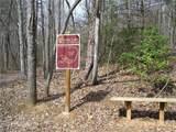 345 Shoal Creek Trail - Photo 38