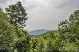 287 Tracking Elk Trail - Photo 13