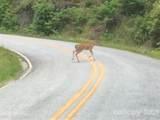 715 Panther Ridge Road - Photo 12