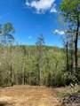 3B Dragon Tail Trail - Photo 5