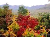 00 High Rock Ridge - Photo 12