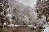 280 Bear River Lodge Trail - Photo 44