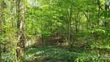00 Timber Lane - Photo 16