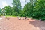3450 Maple Wood Drive - Photo 43