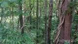 TBD Deep Woods Road - Photo 5