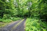 000 Shelton Branch Road - Photo 7