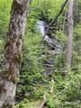 121 Bear Track Drive - Photo 1