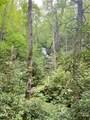 121 Bear Track Drive - Photo 3