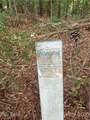 1221 Goodes Creek Church Road - Photo 19