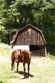200 Black Hawk Trail - Photo 40