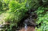 303 Falling Waters Road - Photo 4