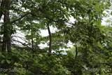 M83 Pine Mountain Trail - Photo 4