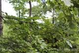 M83 Pine Mountain Trail - Photo 8