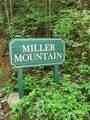 Lot #24 Miller Mountain Road - Photo 9