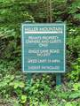 Track #2 Miller Mountain Road - Photo 15