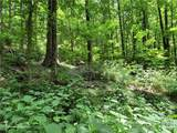 Track #2 Miller Mountain Road - Photo 6