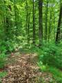 Track #2 Miller Mountain Road - Photo 8