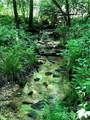 TBD Breckenridge Trail - Photo 1