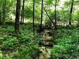 TBD Breckenridge Trail - Photo 3